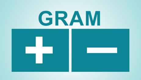 Gram Positive and Gram Negative Bacteria